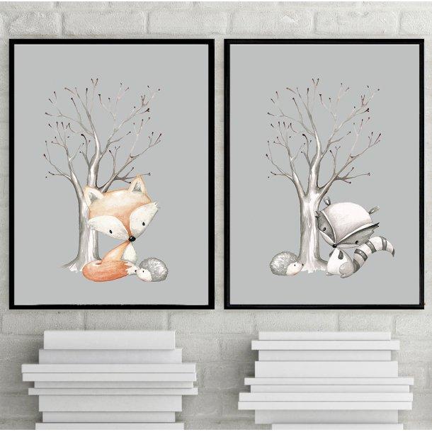 MitDejligeHjem - Børne Plakat - forest til dreng - vaskebjørn